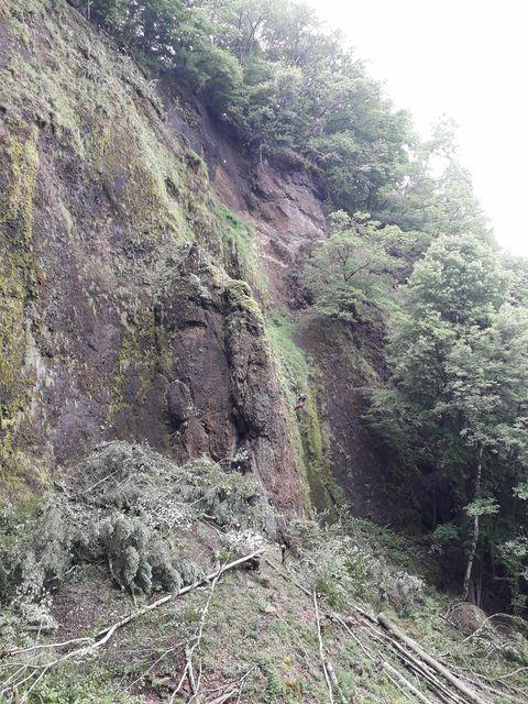 coupe rase de la végétation à la cascade de la rochenie la charmille paysagiste