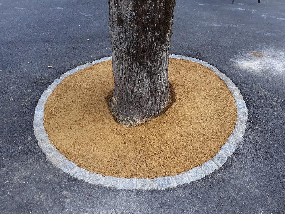entourage d'arbres la charmille paysagiste mauriac