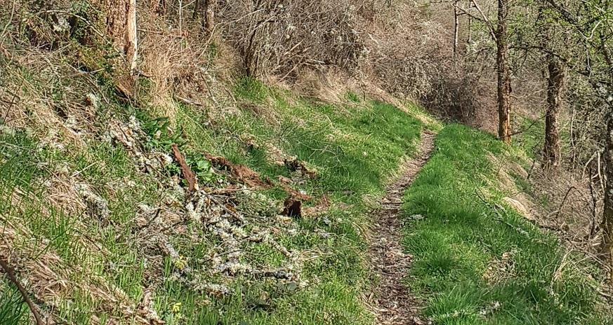entretien des sentiers de randonnée la charmille paysagiste mauriac